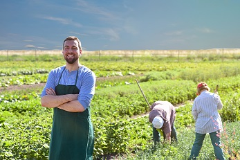 Staff contracts for agricultural businesses