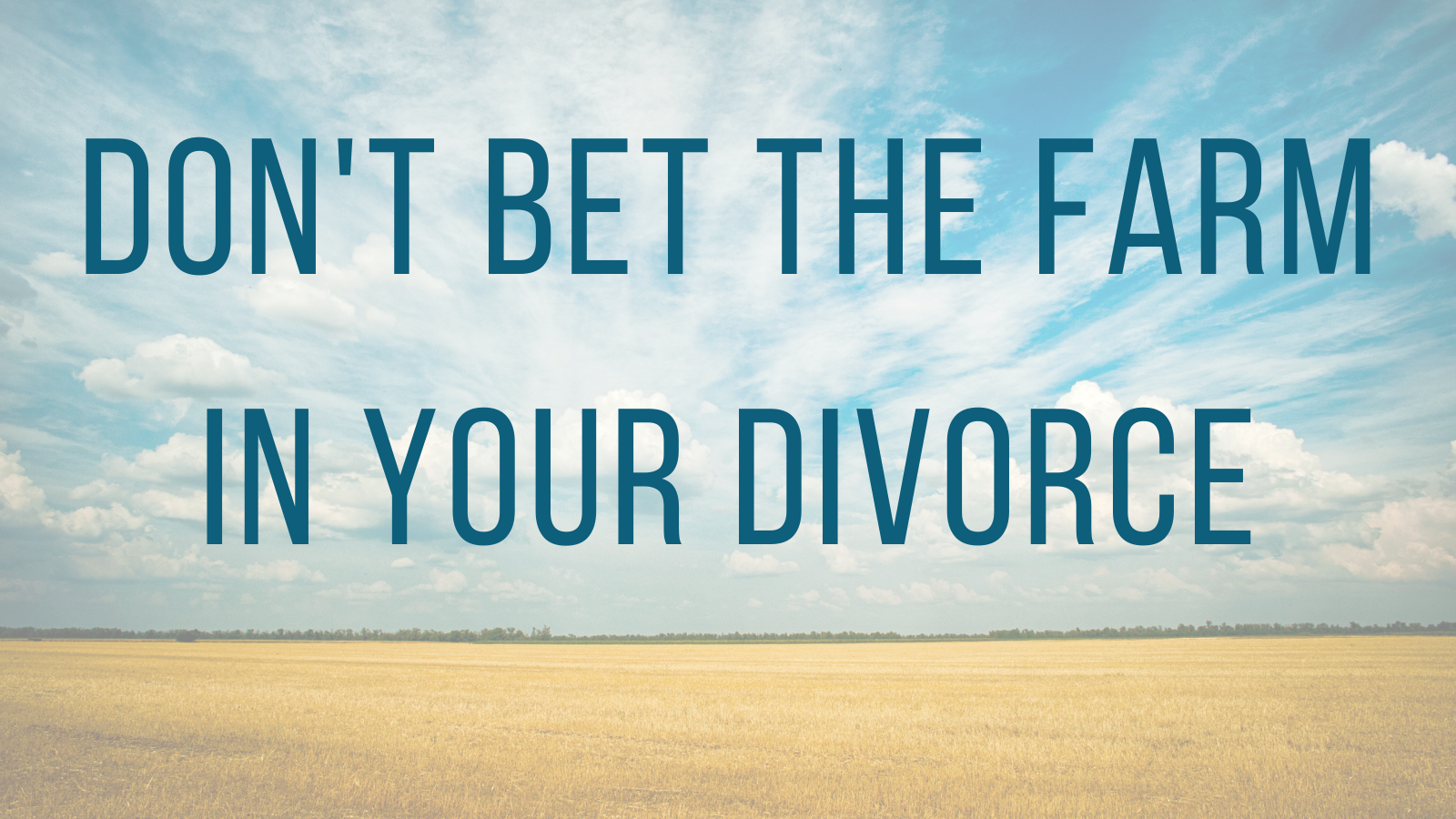 """Don't """"bet the farm"""" in your divorce: how a family lawyer can help."""